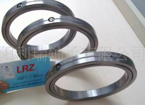 Industrial robot bearing